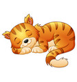 cute cat sleeping vector image