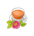 dog rose tea vector image vector image