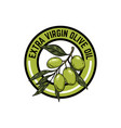 extra virgin olive oil emblem with olive branch vector image vector image