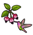 fuchsia and hummingbird embroidery patch vector image