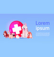 group happy dogs over vet clinic icon vector image