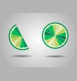 lime slice background summer fresh element vector image