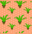 seamless floral pattern with plants in pots vector image vector image