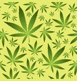 seamless pattern with marijuana leaves vector image vector image