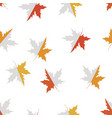 seamless pattern with red yellow and orange maple vector image vector image
