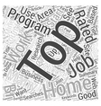 Top Work at Home Jobs Word Cloud Concept vector image vector image