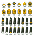 usa army enlisted ranks chevrons with insignia vector image