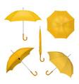 yellow umbrellas realistic vector image