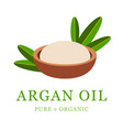 argan oil skin care cosmetic argan seeds for the vector image vector image