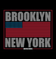 brooklyn ny flag t-shirt vector image vector image
