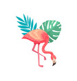 cute flamingo with scarlet plumage and leaves of vector image