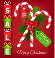 merry christmas special discount and sale poster vector image vector image