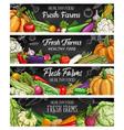 vegetables farm food chalk sketch banners vector image vector image