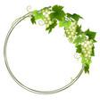 white grapes wreath vector image vector image
