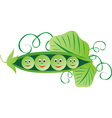 Green peas cartoon vector image