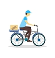 Delivery Bicycle Man with Carton Box vector image