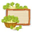 a basket of celery on wooden banner vector image vector image
