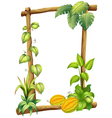 A wooden frame with plants vector image vector image