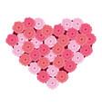cute roses cartoon vector image