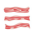 fresh bacon stripe pork meat healthy tasty vector image vector image