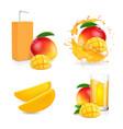 mango juice splash mango fruit and drink package vector image vector image