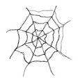 spider web hand drawn sketched web isolated on vector image vector image
