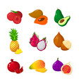 tropical exotic fruits set icons vector image