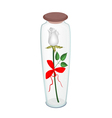 A White Rose with Red Ribbon in Glass Bottle vector image vector image