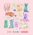 cute cats doodle character cats icon sticker set vector image vector image