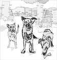 Dogs in The City vector image vector image