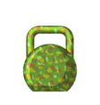 kettlebell green camouflage military gift for men vector image vector image