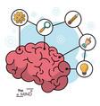 mind human brain creative innovation idea vector image vector image