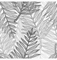monochrome gray tropical leaves pattern vector image