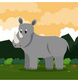 rhino safari animal vector image vector image