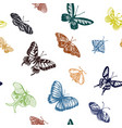 sketch a butterfly vector image