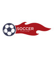 soccer or football isolated icon with lettering vector image vector image