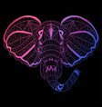 hand drawn neon elephant vector image