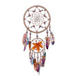 hand drawn ornate dreamcatcher with feathers and vector image