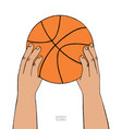 hands hold basketball ball on white background vector image vector image