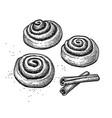 ink sketch cinnamon rolls vector image