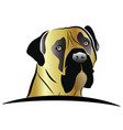 mastiff dog head logo vector image vector image