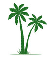palm trees silhouettes isolated on white vector image vector image
