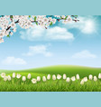 spring landscape with tree branch and flowers vector image vector image