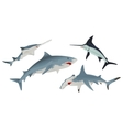 Set Fish sea animal vector image