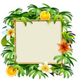 bamboo frame with tropical flowers vector image
