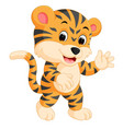 cute tiger cartoon giving thumb up vector image