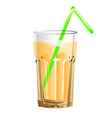 glass of juice vector image vector image