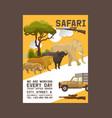 safari hunting poster hunter vector image