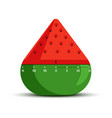 timer and time measuring isolated icon watermelon vector image vector image