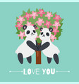 valentine s day panda in love romantic couple vector image